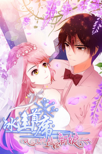 The Icy Ceo and the Substitute Bride