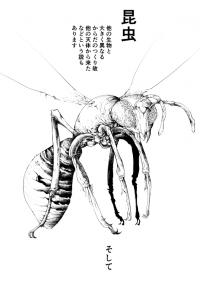 Looking Into The Theory Of Insects Coming From Outer Space